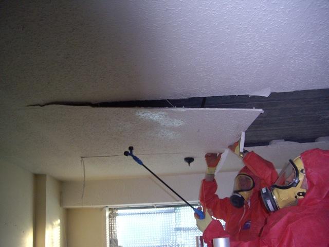 Asbestos Removal.Dec.2010