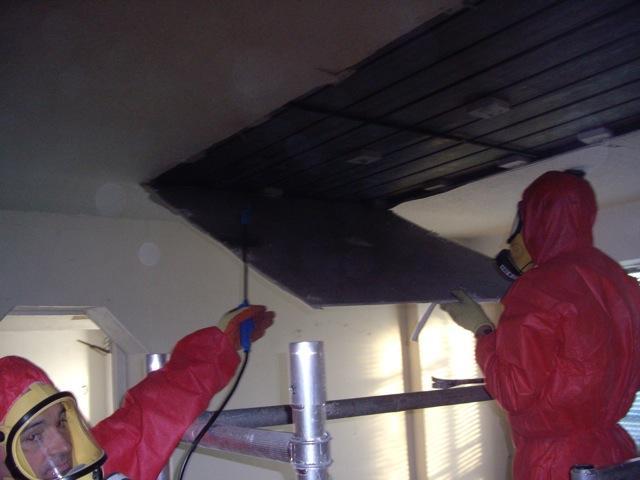 More Asbestos Removal.Dec.2010
